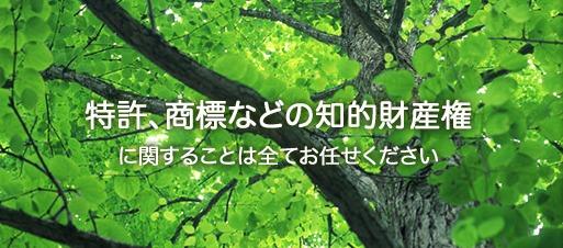山木国際特許事務所